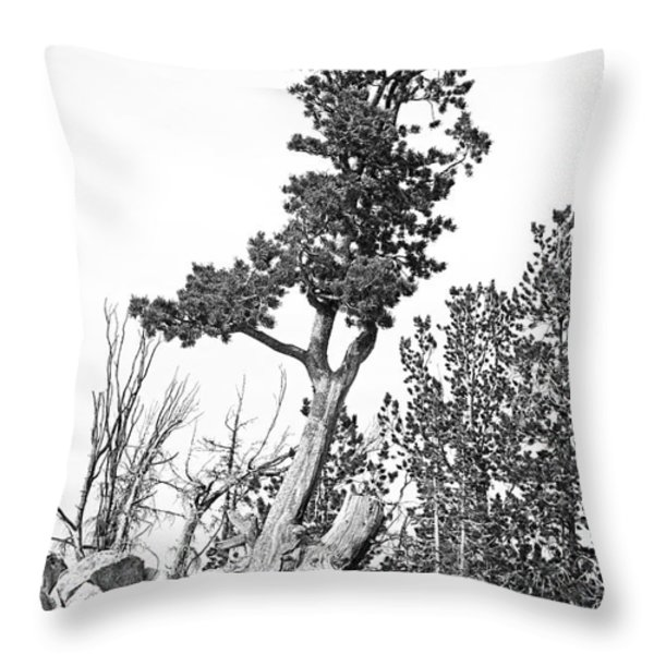 Old Gnarly Tree Throw Pillow by Edward Fielding