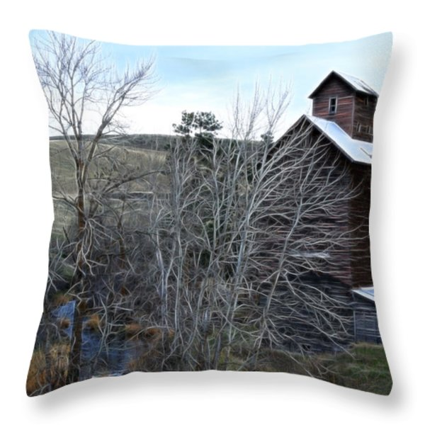 Old Grain Barn Throw Pillow by Steve McKinzie