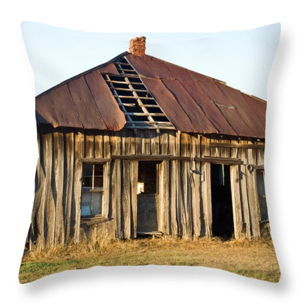 Old House Place Arkansas 3 Throw Pillow by Douglas Barnett
