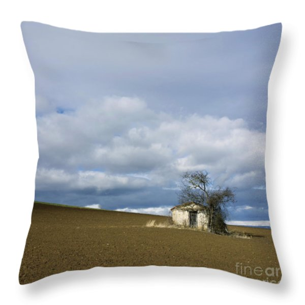 Old hut. Auvergne. France Throw Pillow by BERNARD JAUBERT