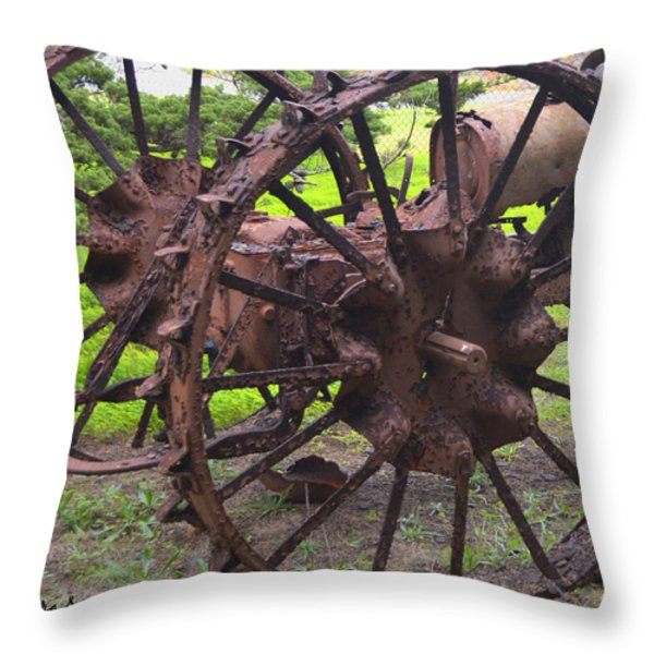 Old Iron Detail 2 Throw Pillow by Barbara Snyder