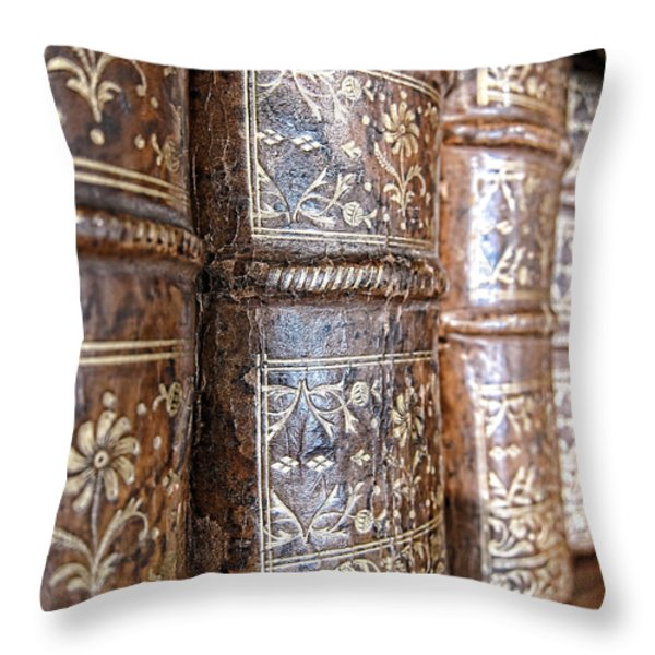 Old Knowledge Throw Pillow by Olivier Le Queinec