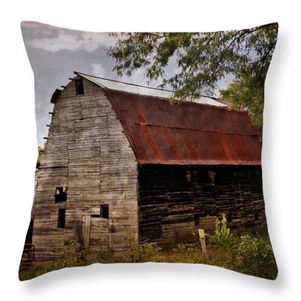 Old Oak Barn Throw Pillow by Marty Koch