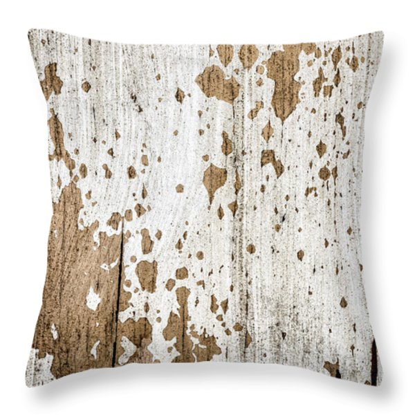 Old Painted Wood Abstract No.3 Throw Pillow by Elena Elisseeva