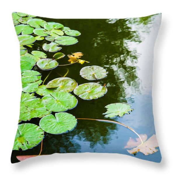 Old Pond - Featured 3 Throw Pillow by Alexander Senin