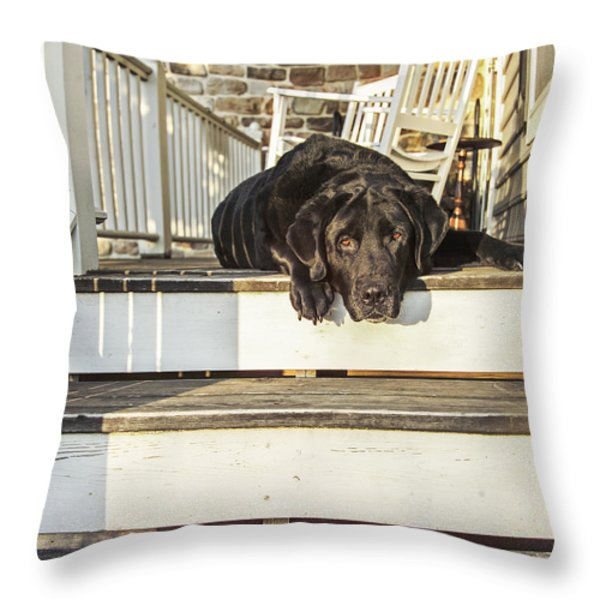 Old Porch Dog Throw Pillow by Diane Diederich