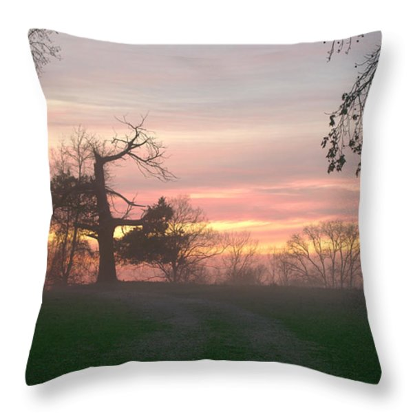 Old Tree At Sunset Throw Pillow by Brian Harig