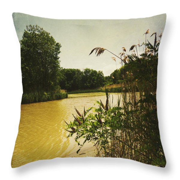 Old Woman Creek  Throw Pillow by Shawna  Rowe