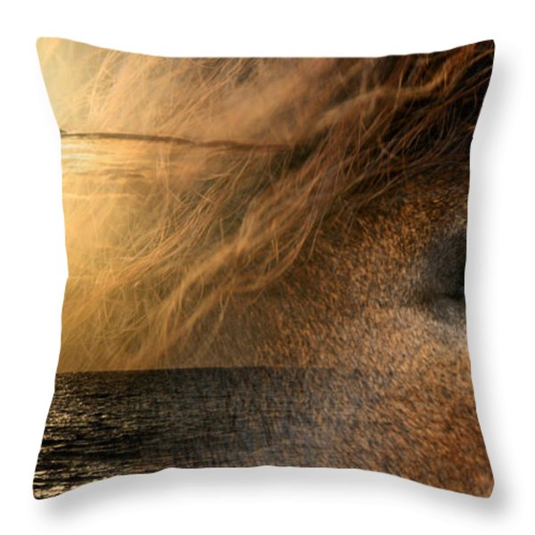 Oli no au i na pono  Throw Pillow by Sharon Mau