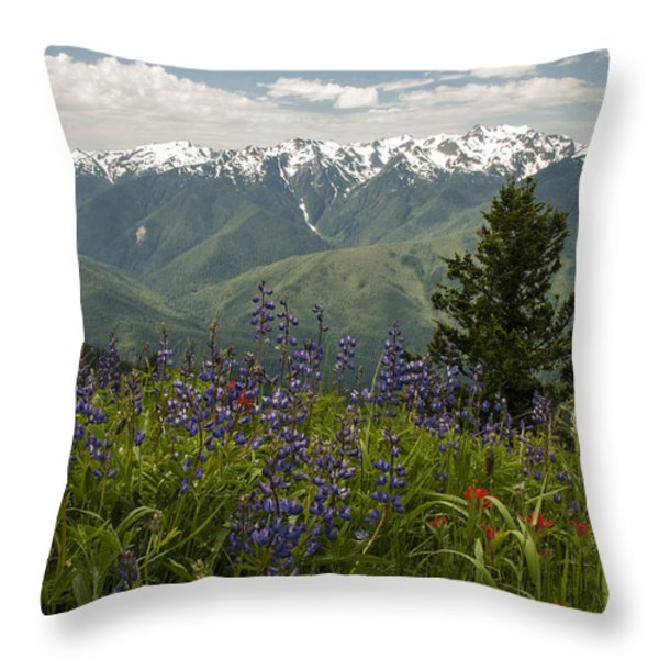Olympic Mountain Wildflowers Throw Pillow by Brian Harig