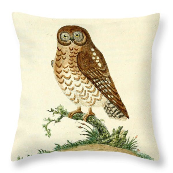 Ominous Owl Throw Pillow by John Latham