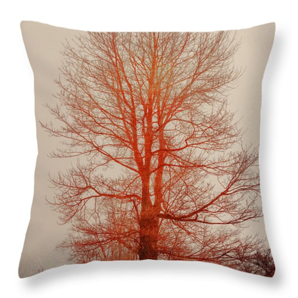 On Fire In The Fog Throw Pillow by Lois Bryan