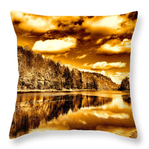 On Golden Pond Throw Pillow by David Patterson