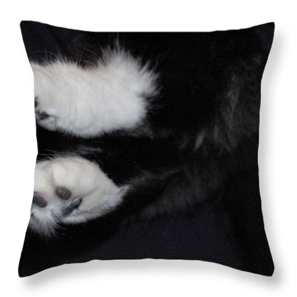 On Little Cat Feet Throw Pillow by Marilyn Wilson