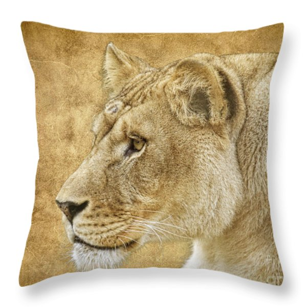On Target Throw Pillow by Steve McKinzie