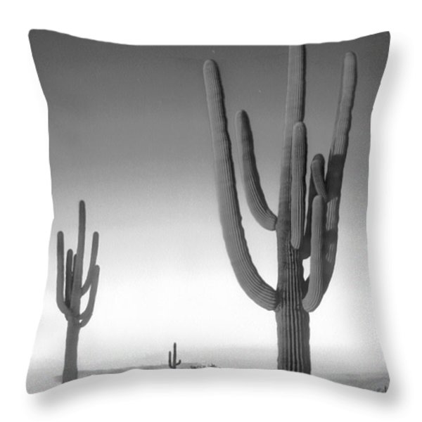 On The Border Throw Pillow by Mike McGlothlen