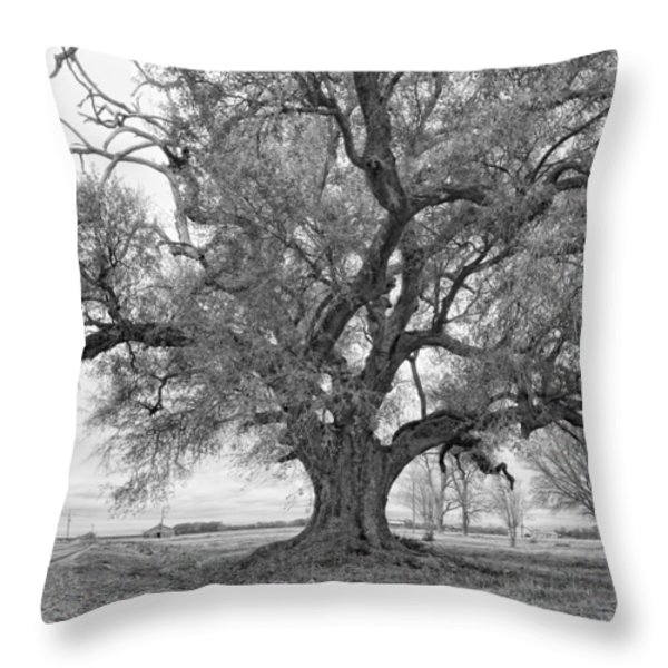 On the Delta monochrome Throw Pillow by Steve Harrington
