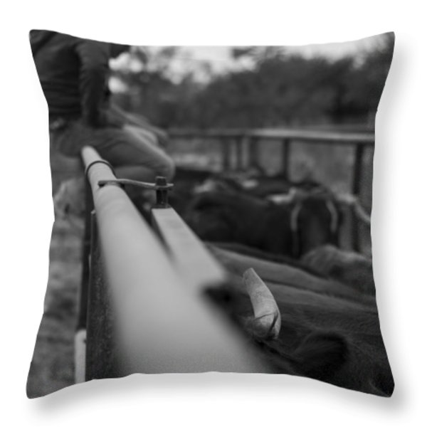On The Fence Throw Pillow by Amber Kresge