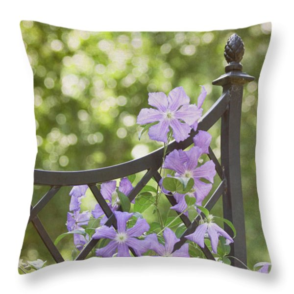 On The Fence Throw Pillow by Kim Hojnacki