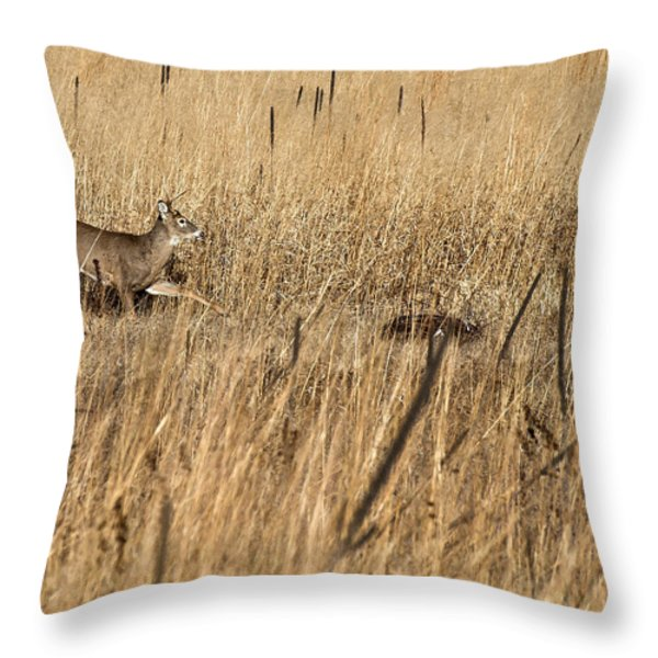 On The Run 2 Throw Pillow by Thomas Young