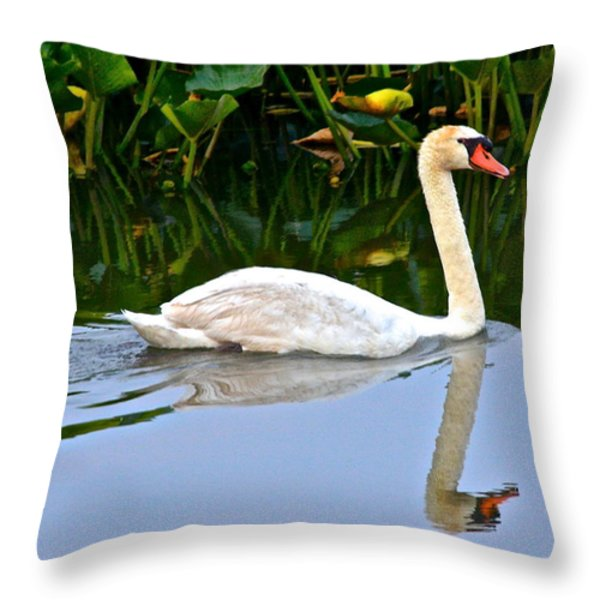On the Swanny River Throw Pillow by Frozen in Time Fine Art Photography