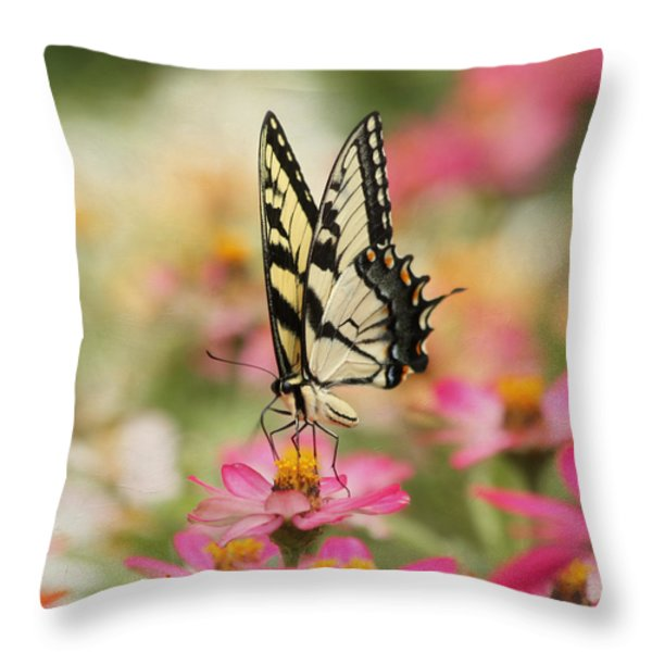 On The Top - Swallowtail Butterfly Throw Pillow by Kim Hojnacki