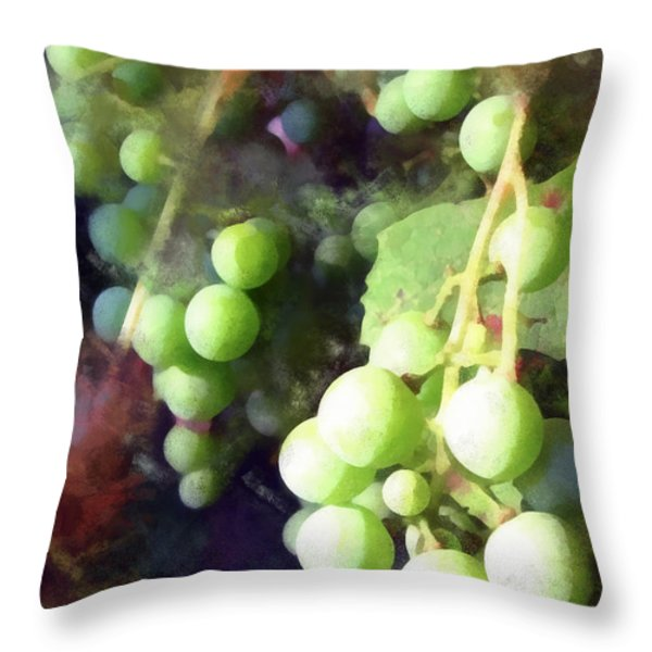 On The Vine Throw Pillow by Todd A Blanchard