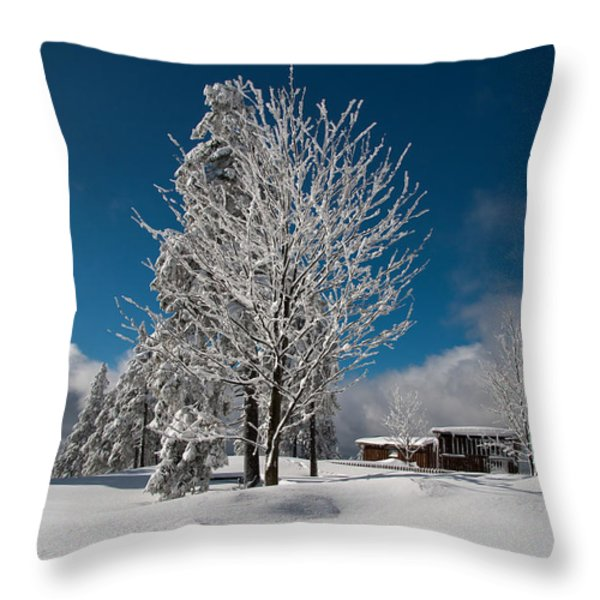 On The Wurmberg Throw Pillow by Andreas Levi