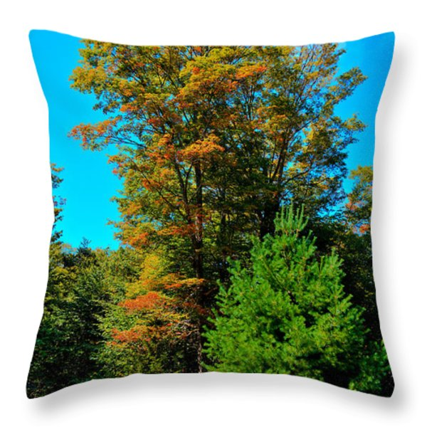 On Top of Maple Ridge - Old Forge New York Throw Pillow by David Patterson