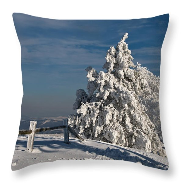 On Top Of The World Throw Pillow by Lois Bryan