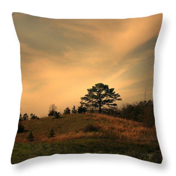 Once Throw Pillow by Nina Fosdick
