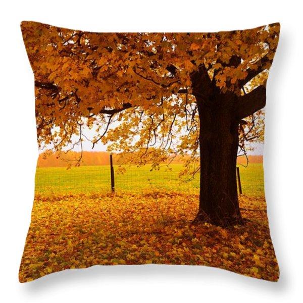 One Autumn Tree Throw Pillow by Terri Gostola