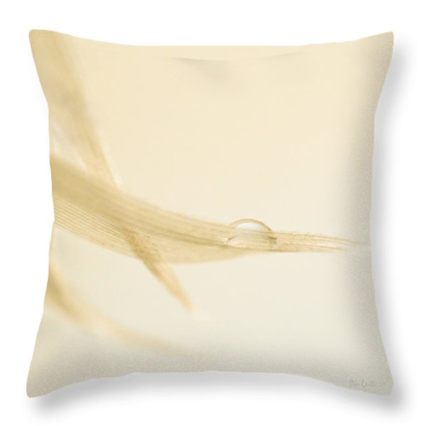 One Drop of Water Throw Pillow by Bob Orsillo