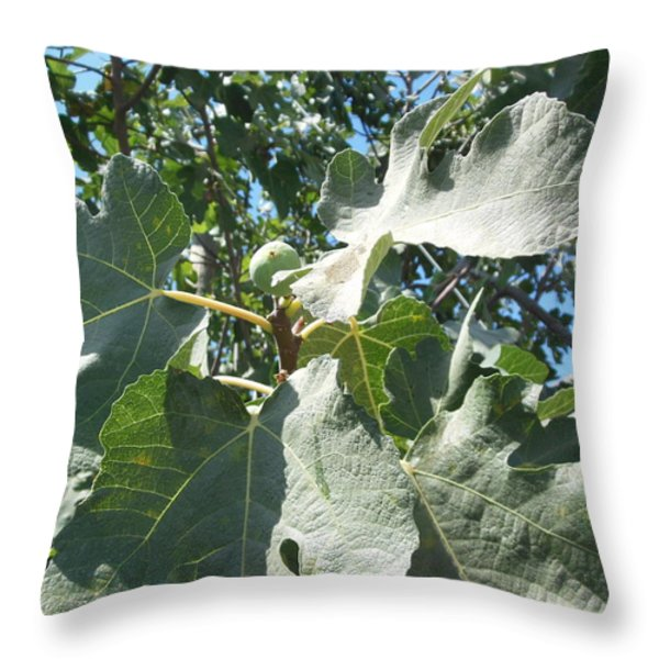 One Fantastic Fig Throw Pillow by Esther Newman-Cohen