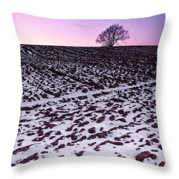 One More Tree Throw Pillow by John Farnan