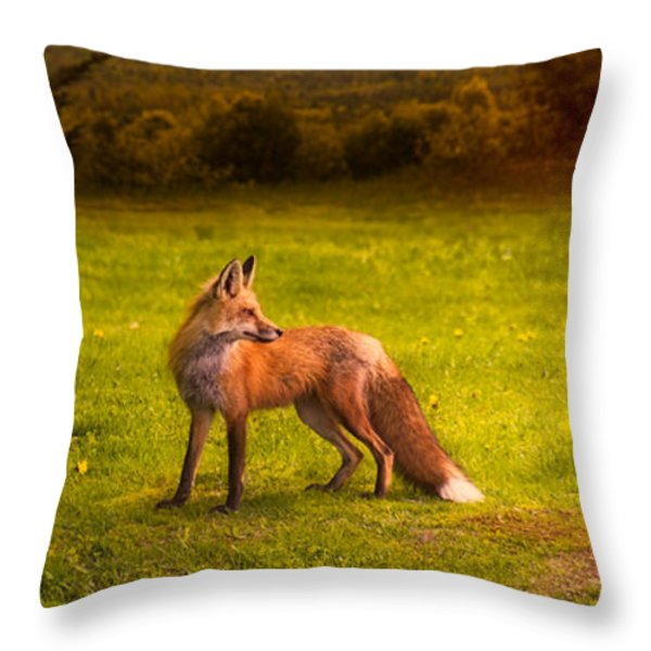 One Red Fox Throw Pillow by Bob Orsillo