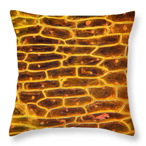 Onion Skin Throw Pillow by Garry DeLong
