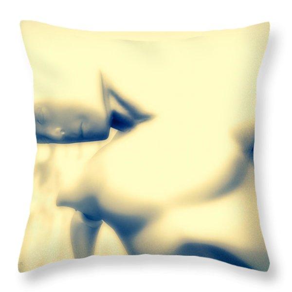 Ontology Throw Pillow by Bob Orsillo