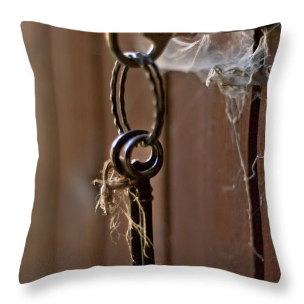 Open Again Throw Pillow by Nomad Art And  Design