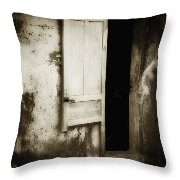 Open Door Throw Pillow by Skip Nall
