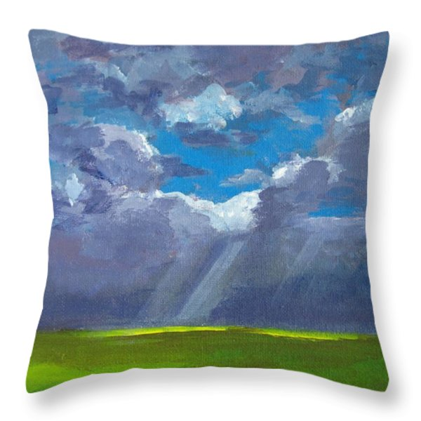 Open Field Majestic Throw Pillow by Patricia Awapara