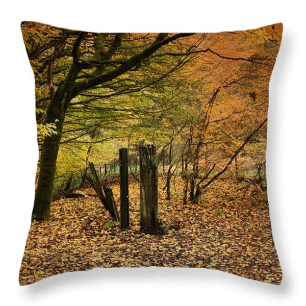 Orange Autumn Throw Pillow by David Tinsley