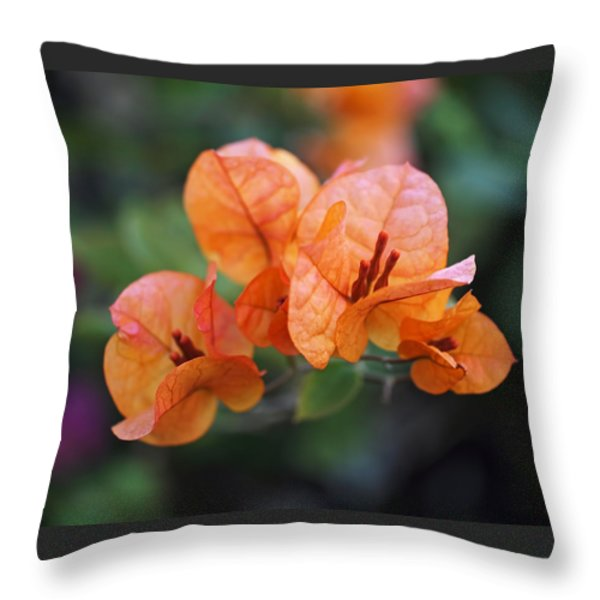 Orange Bougainvillea Throw Pillow by Rona Black