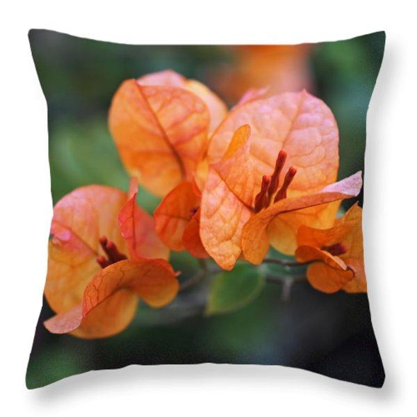 Orange Bougainvillea Throw Pillow by Rona Black