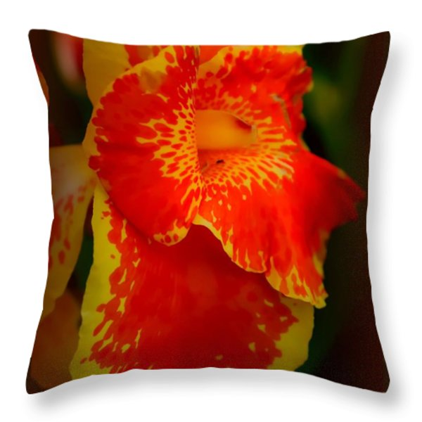 Orange Delight Throw Pillow by Debra Forand