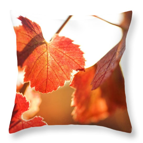 Orange Grapevine Leaves Throw Pillow by Charmian Vistaunet