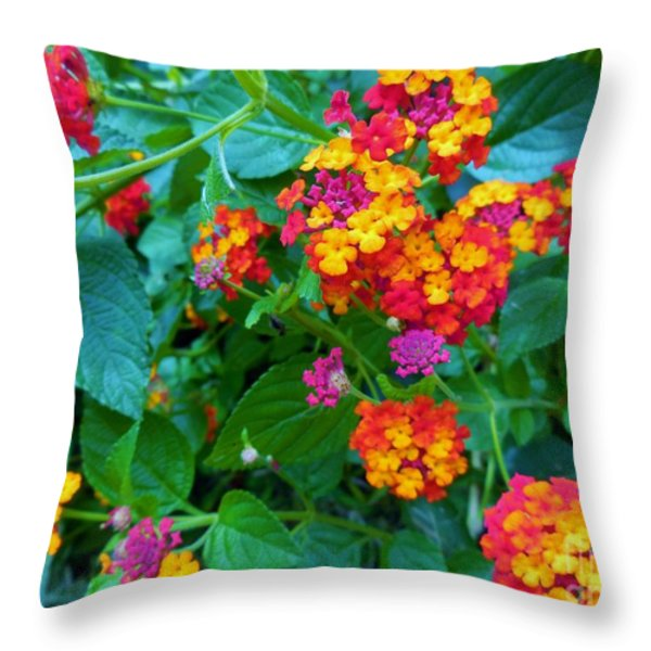 Orange... Yellow... Mauve... And Red Throw Pillow by Eloise Schneider