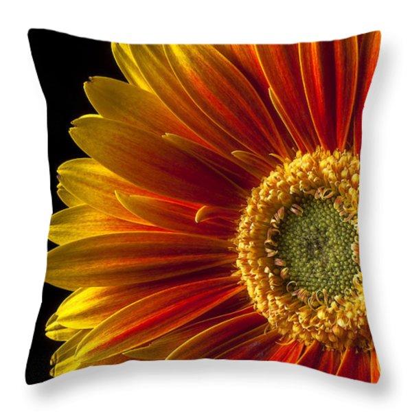 Orange yellow mum close up Throw Pillow by Garry Gay