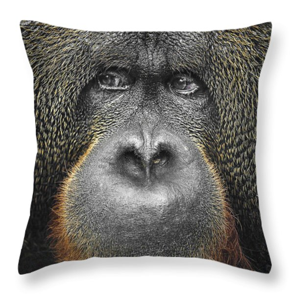 Orangutan Throw Pillow by Svetlana Sewell