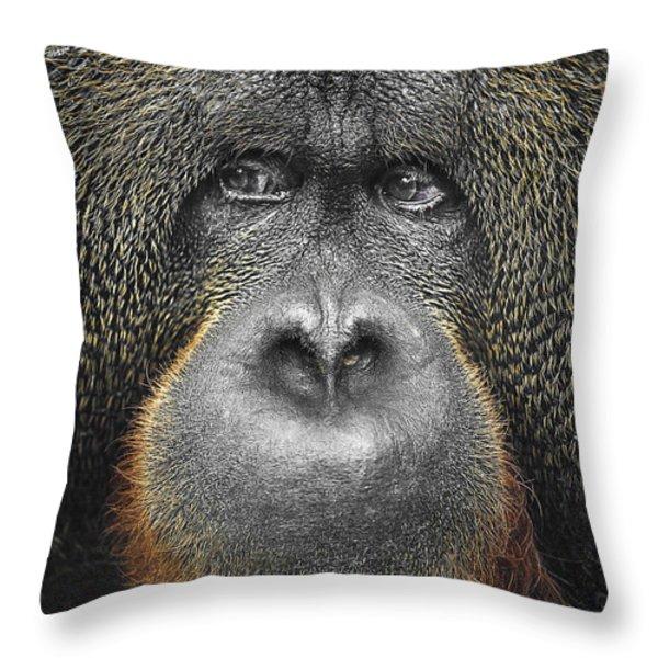 Orangutan Throw Pillow by Svetlana Sewell